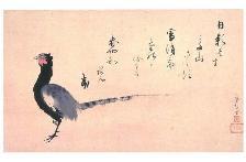 松花堂オリジナルポストカード:「雉子図」
